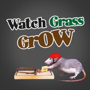 Watch Grass Grow Gift